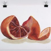 """Angela Faustina, Blood orange study, 2015. Oil on unstretched canvas, 12"""" by 9""""."""