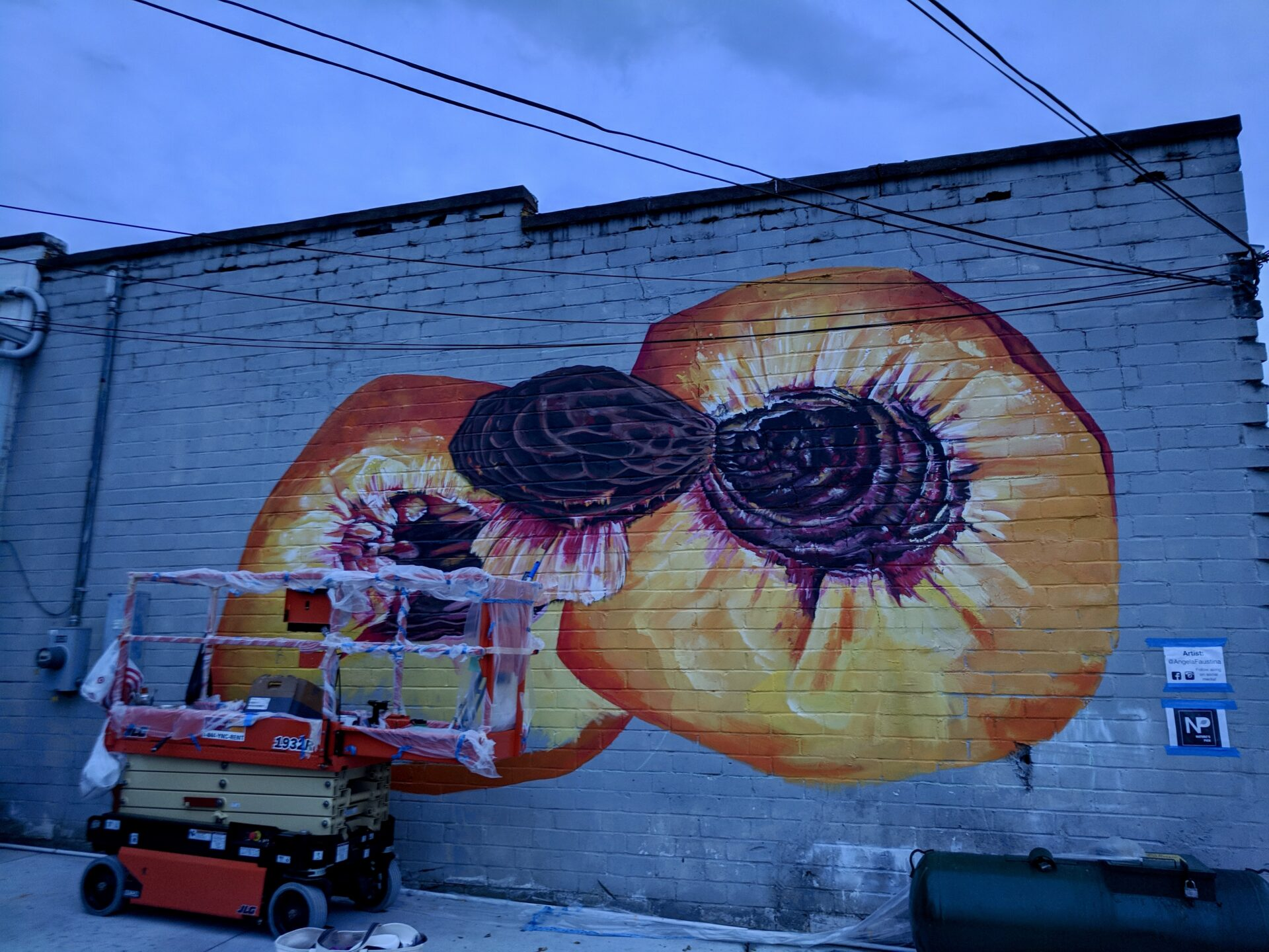 Angela Faustina painting Peach III mural on Marietta Square for the M2R Trailfest, sponsored by Nature's Pick Market.