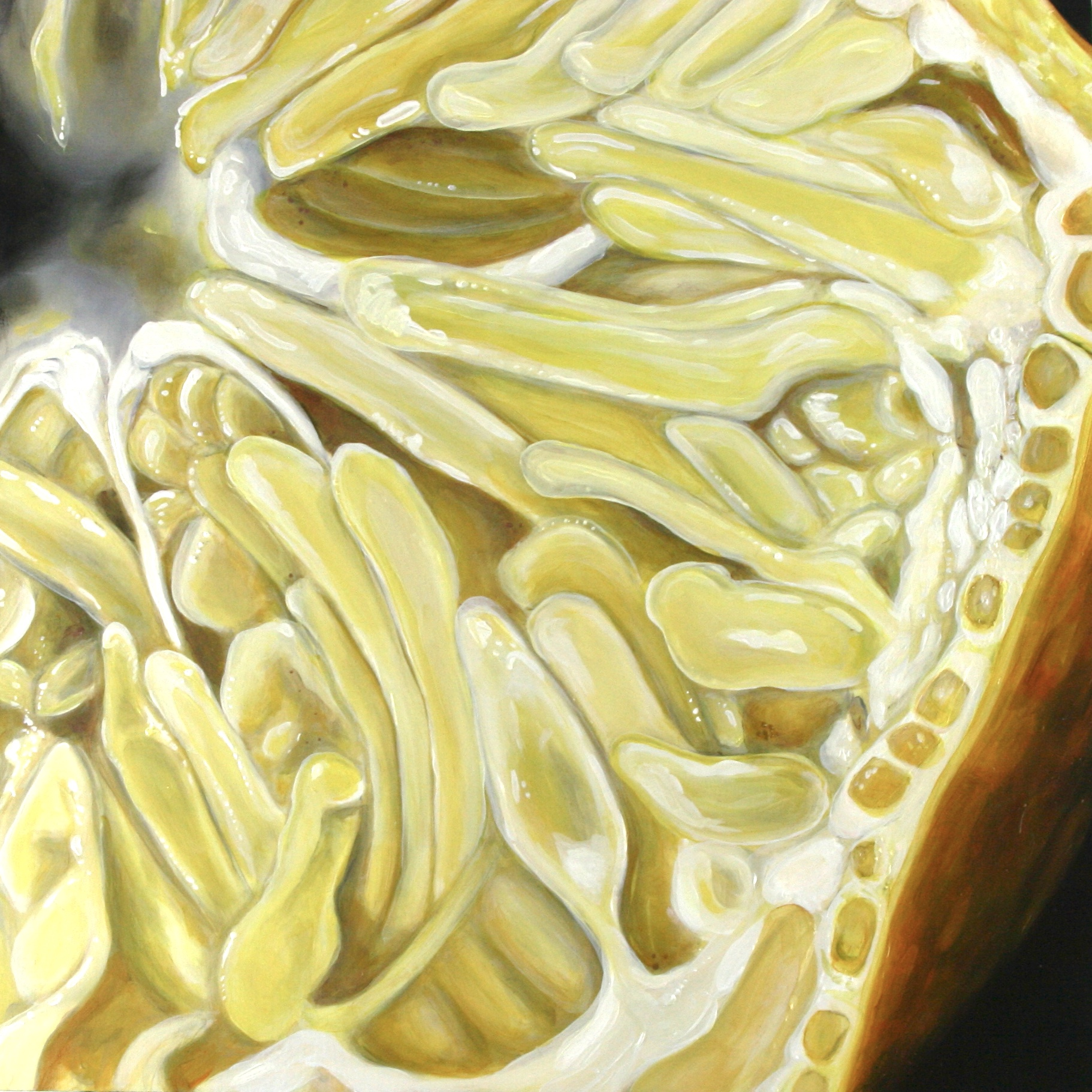 "Angela Faustina, Meyer Lemon I, 2015-2016. Oil on cradled painting panel, 16"" by 16"". Available for purchase through Gallery43, Roswell, GA."