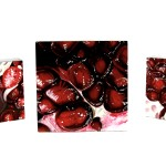 oil painting details of Pomegranate XXV, Pomegranate XXVI, and Pomegranate XXVII by Angela Faustina