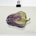 """Angela Faustina, Purple Holland bell pepper study, 2016. Watercolor on paper, 5"""" by 7""""."""
