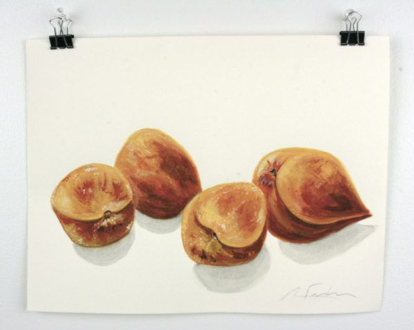 """Angela Faustina, Georgia peaches study, 2016. Watercolor on paper, 12"""" by 9""""."""