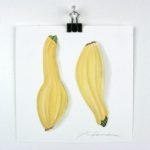 "Angela Faustina, Yellow squash watercolor study, 2016. Watercolor on paper, 6"" by 6""."