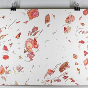 "Angela Faustina, POMEGRANATE segments painting, 2020. Ink and watercolor paint on bristol board paper, 14"" by 11""."
